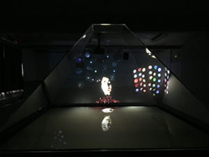 instalation galaxia wang